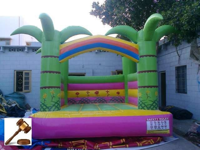 Jumping Castle and Slides 12